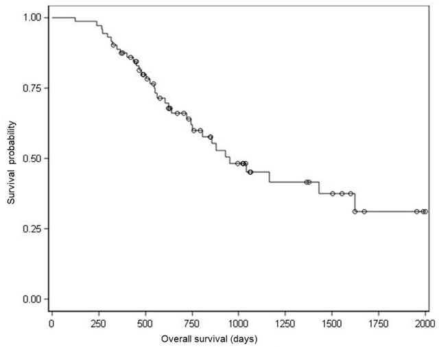 Kaplan–Meier analysis of overall survival.