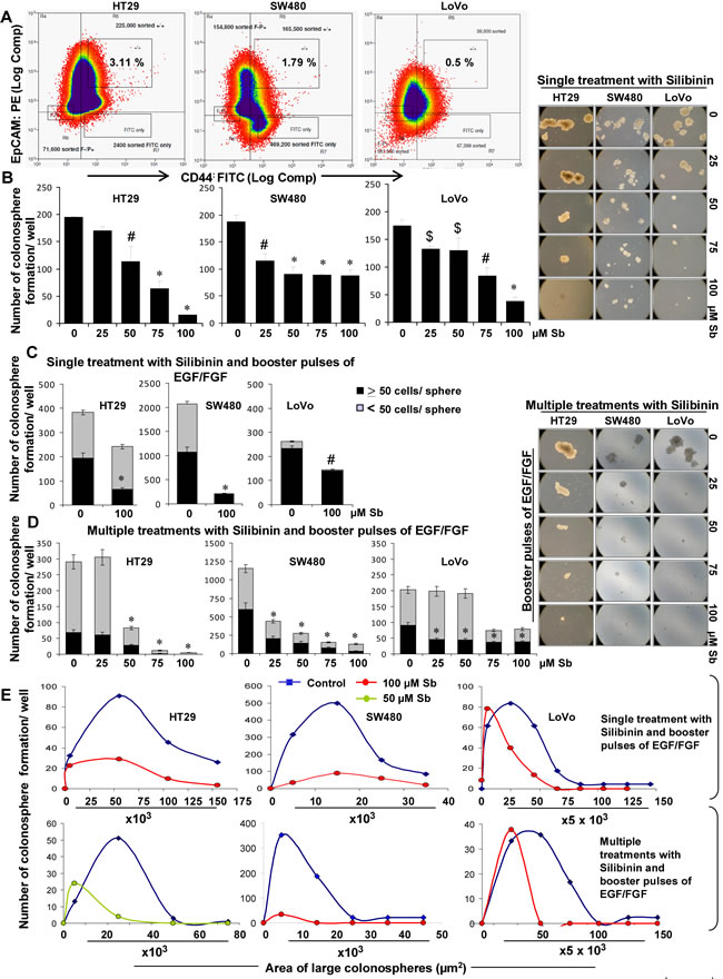 Effect of silibinin on the formation of CSC enriched colonosphere in HT29, SW480, and LoVo CRC cells.