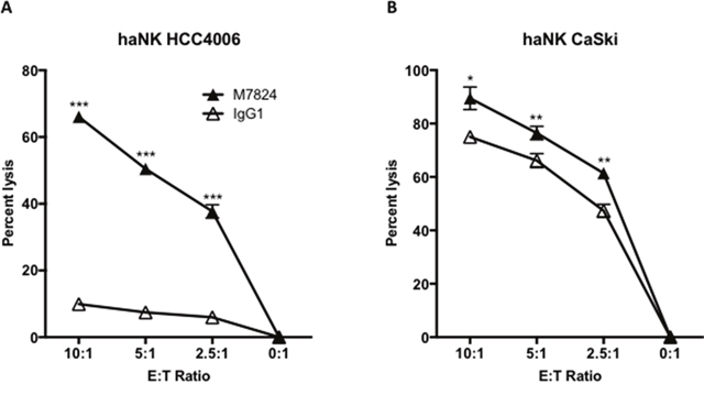 M7824 mediates ADCC of tumor cells employing an NK cell line (haNK) expressing the high affinity CD16 allele.