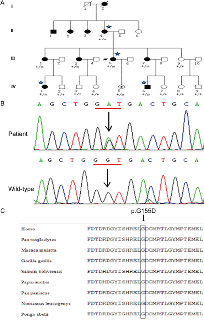 A Chinese ADNFLE pedigre with a mutation in the CABP4 gene.