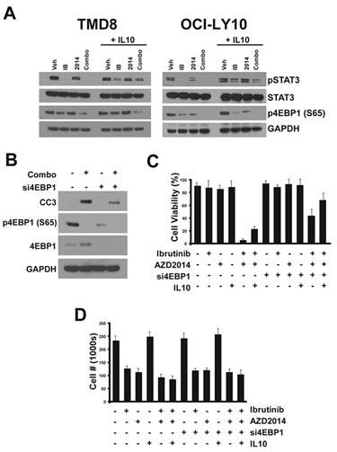Determinants of apoptosis.