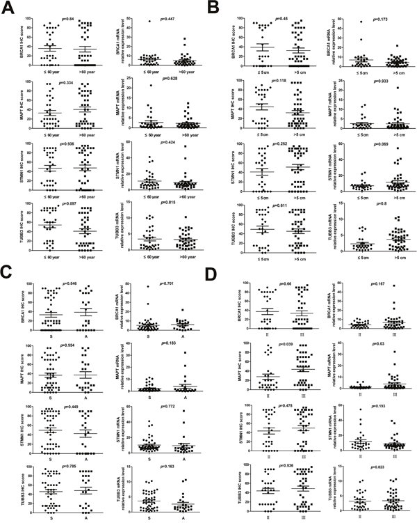 Analysis of the correlation between clinical features and expression levels of BRCA1, MAPT, STMN1 and TUBB3 in NSCLC.