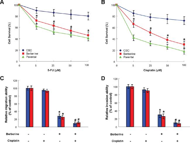 Use of berberine to potentiate chemotherapy.