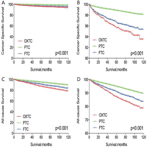 Kaplan Meier curves among patients stratified by subtype for cancer-specific mortality.