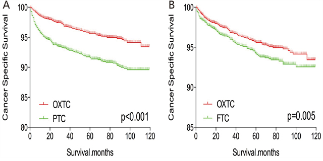 Kaplan Meier curves of cancer-specific mortality for matched subtype pairs.