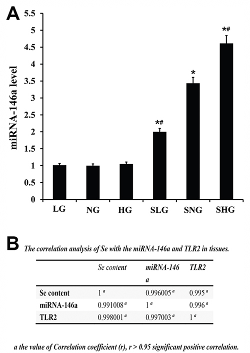 Effect of Se on miR-146a expression in mammary tissues from S. aureus- infected mastitis model mice.