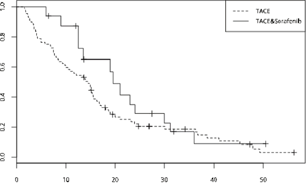 The OS curve of the two group--the TACE plus sorafenib group, n=19, median OS is 23 months, the TACE group, n=78, median OS is 13.8 months and no significant differences was showed (p=0.061).