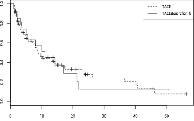 TTP curve of the two group-- the median TTP showed no significant differences (TACE-sorafenib vs TACE, 10 months vs 8.8 months, p=0.061).