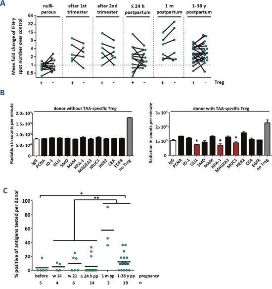 TAA-reactive T cells are suppressed via regulatory T cells after delivery.