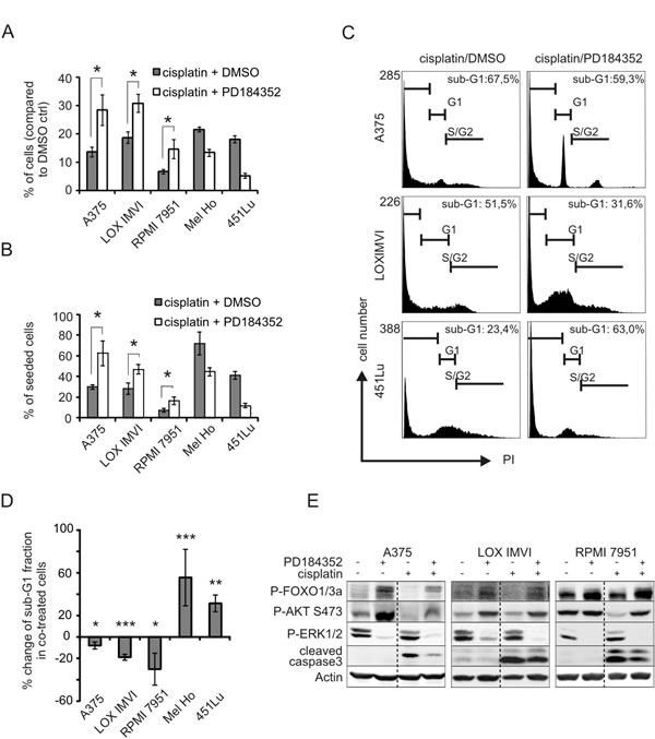MEK inhibition can protect from cisplatin-induced apoptosis.