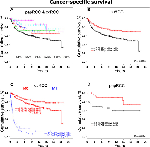 Analysis of cancer-specific survival in RCCs.