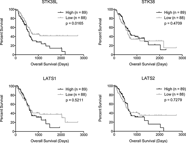 High STK38L expression is associated with decreased overall survival in PDAC patients.