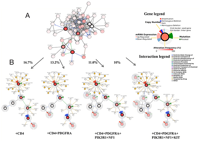cdkn2a oncotarget functional network analysis of gene phenotype