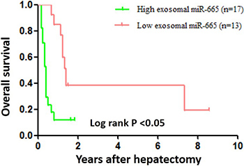 Overall survival curves for 30 HCC patients who underwent hepatectomy.