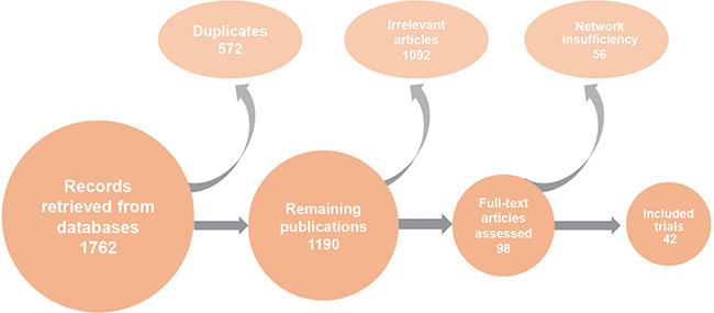 Flow chart of publication screening process.