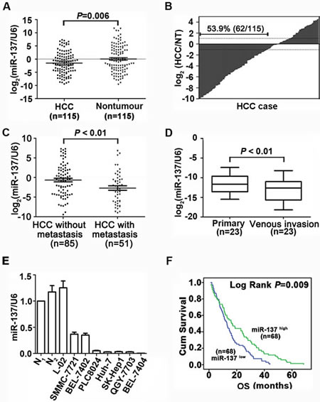 miR-137 is frequently down-regulated in HCC and associates with poor outcome.