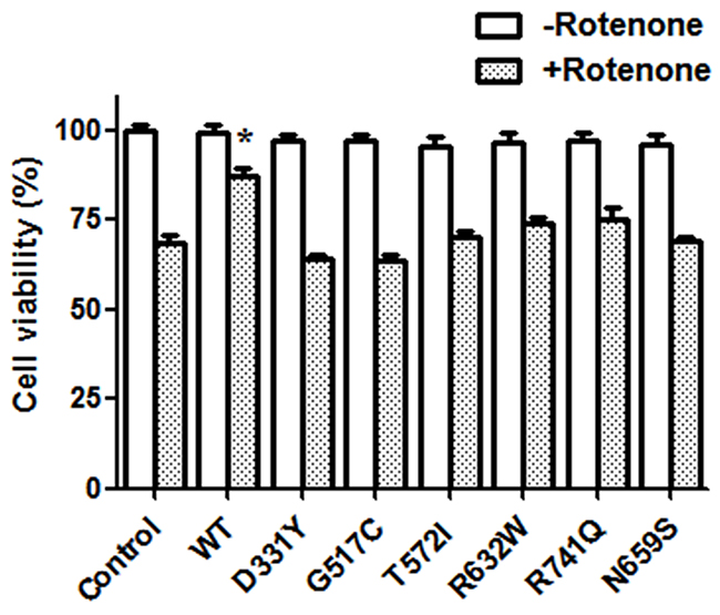 Expression of WT PLA2G6, but not PARK14 mutant PLA2G6, attenuates rotenone-induced death of SH-SY5Y dopaminergic cells.
