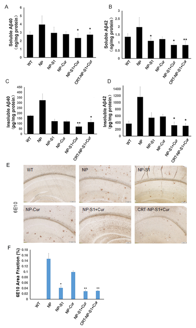 PLGA NPs reduced Aβ40 and Aβ42 levels in AD mouse brains.