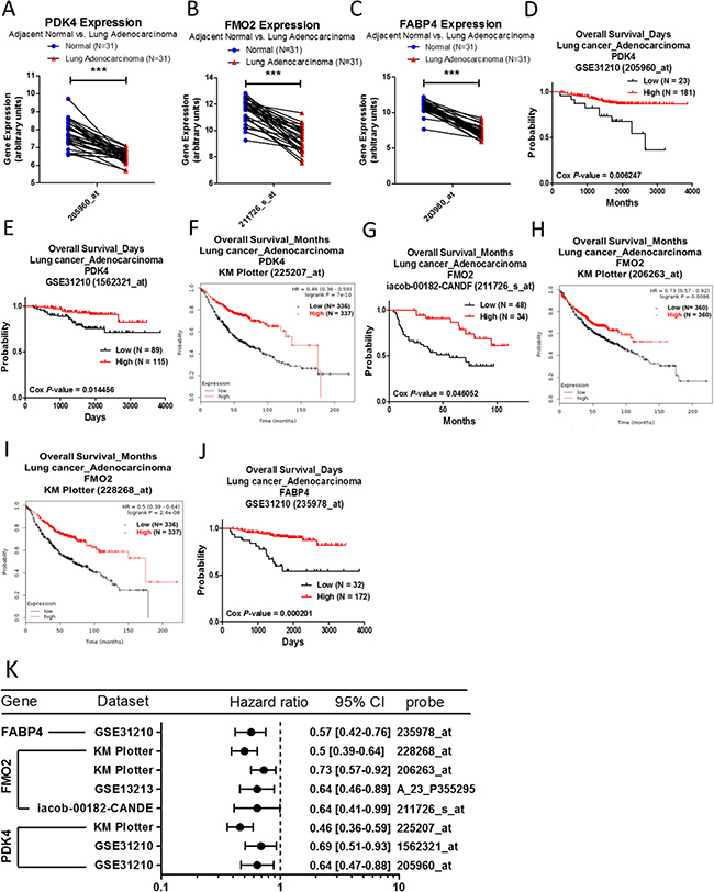 Analysis of PDK4, FMO2 and FABP4 in clinical lung adenocarcinoma patients using bioinformatics databases.
