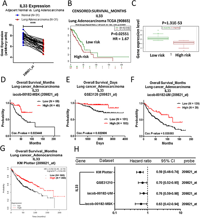 Analysis of IL33 in clinical lung adenocarcinoma patients using bioinformatics databases.