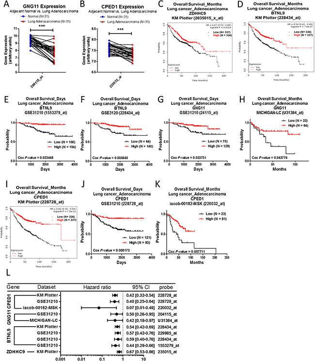 Analysis of ZDHHC9, BTNL9, GNG11 and CPED1 in clinical lung adenocarcinoma patients using bioinformatics databases.