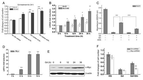 Myc-mediated Glutamine metabolism promotes cell survival from glucose deprivation.