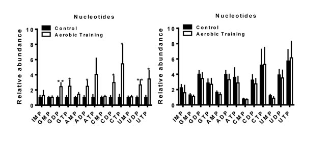 Aerobic training effects on intratumoral nucleotide metabolites.