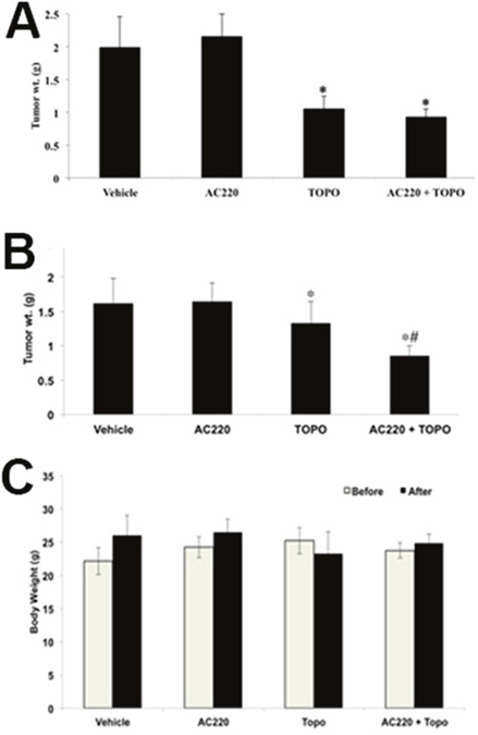 The effect of quizartinib on the tumor weight and body weight of H460 and H460/MX20 xenograft mice.