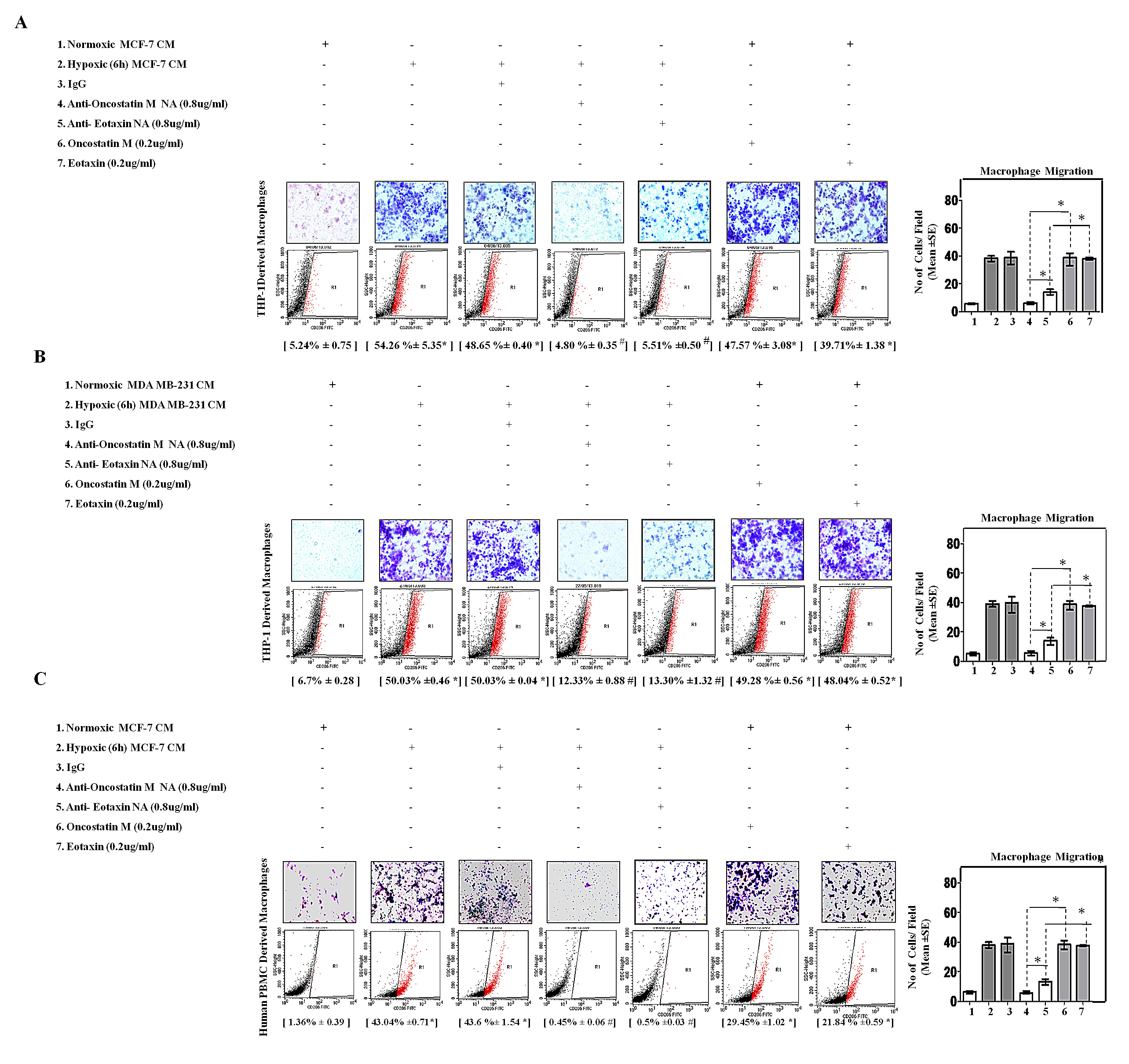 Fig.5: Neutralizing Antibody Mediated Blockade of OncostatinM and Eotaxin Function Prevented Macrophage Chemotaxis and their M2-Polarization.