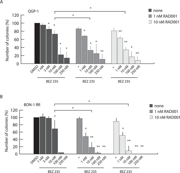 Combined treatment with BEZ235 and RAD001 overcomes resistance of PET cells to RAD001.