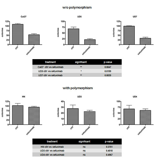 Fig. 2: Resistance to cetuximab was associated with AurkA/STK15 Phe31Ile polymorphism (UD3, UD4, and HN).