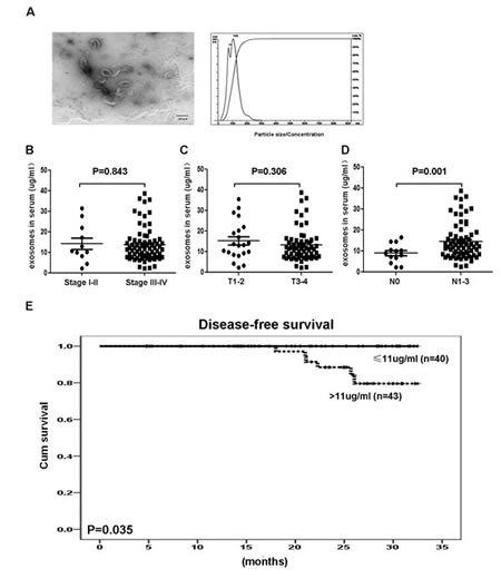 Identification and clinical significance of NPC-derived exosomes.