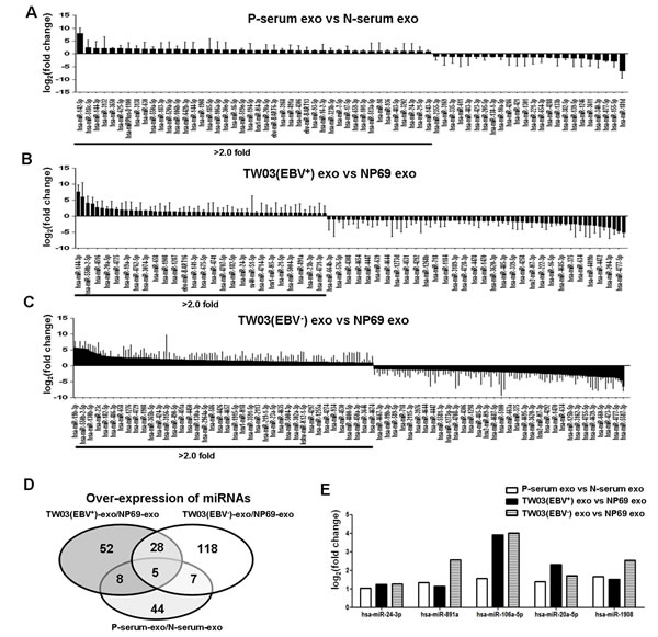 Differential miRNA expression in exosomes.