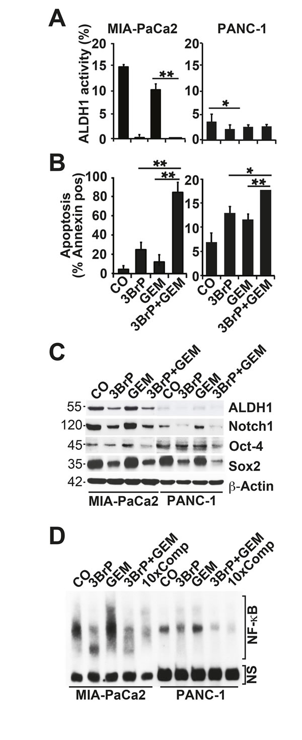 3BrP induces stem cell signaling and apoptosis