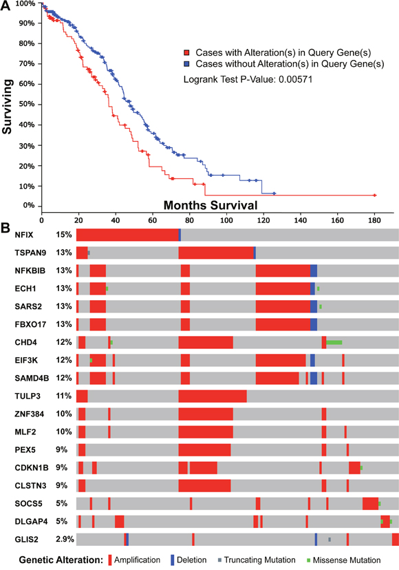 Survival and mutational analyses for the 18 genes with a significant prognostic feature in the TCGA ovarian cancer dataset.