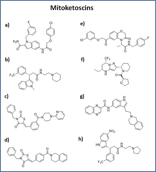 Chemical structures of the top 8 hits.