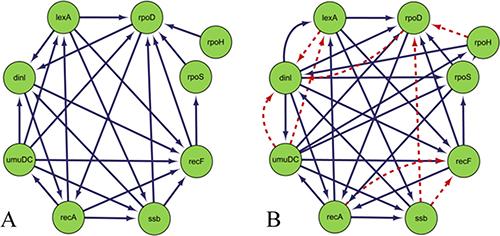 Comparison of Escherichia coli SOS DNA repair network and inferred gene regulatory network.