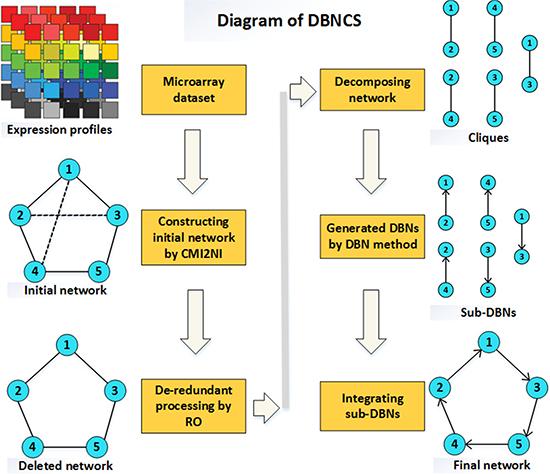 The diagram of DBNCS method.