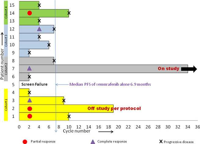 Patient responses to vemurafenib and decitabine across various cohorts.