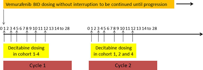 Overall Study Design (Treatment Schema) A subcutaneous dose of decitabine was administered three times/week at 0.1, 0.2 or 0.3 mg/kg for 2 weeks in cohort 1, 2 and 4 respectively while at 0.3 mg/kg for 1 week in cohort 3.