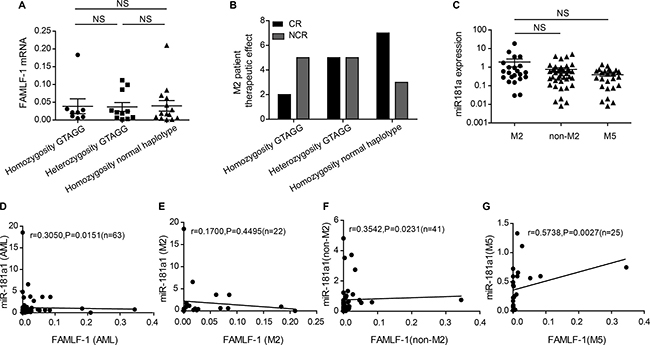Clinical significance of haplotype GTAGG in FAB-M2, relationship between the expression level of miR-181a1 and FAMLF-1 in AML.