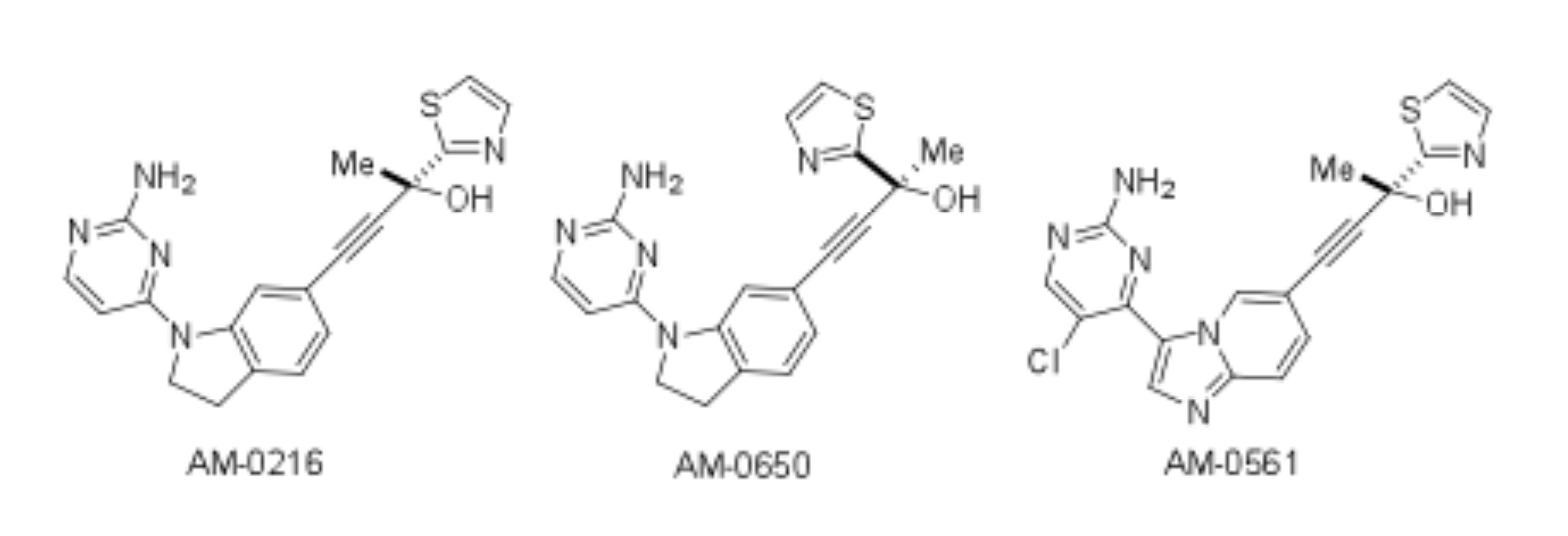 The structure of Amgen NIK compounds.
