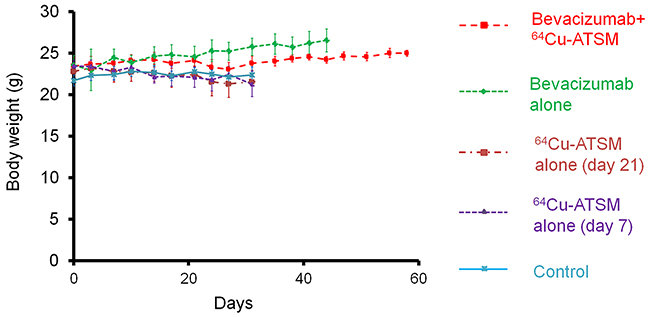 Body weight change in in vivo treatment study