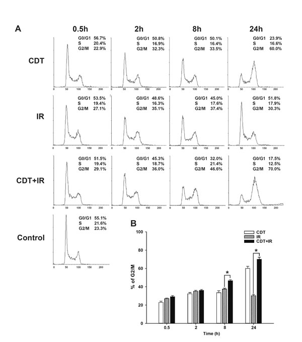 CDT enhanced cell cycle arrest at G2/M in radio-resistant DAB2IP-deficient PCa cells.