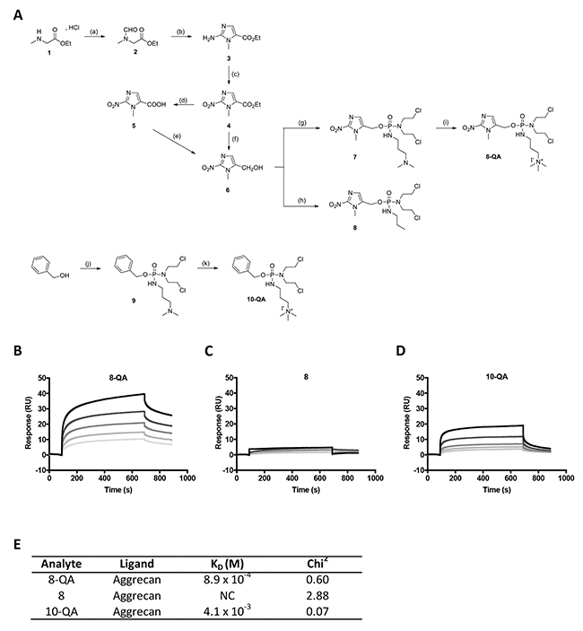 HAP synthesis and binding to immobilized aggrecan by SPR.