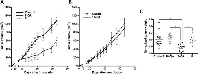 Evaluation of HAP antitumor efficacies on the HEMC-SS xenograft model.