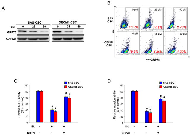 The anti-tumor effect of ISL is mediated by GRP78.