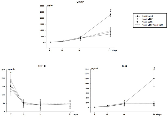 VEGF, TNF-α and IL-6 in pleural effusion of mice injected with LLC cells treated with anti-VEGF and/or anti-EGFR and untreated.