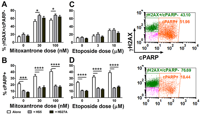 Mitoxantrone robustly activates DNA damage signaling in primary pediatric AML samples.