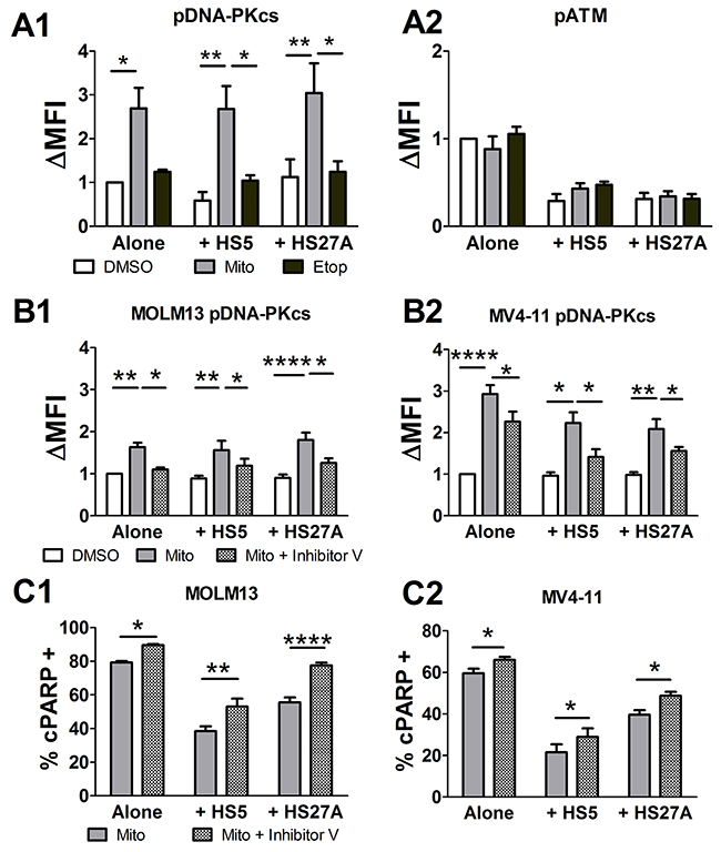 Mitoxantrone-induced DNA-PKcs activation contributes to chemoresistance in pediatric primary AML samples.